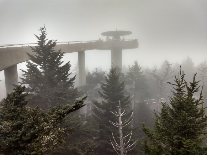 Clingman's Dome in the fog