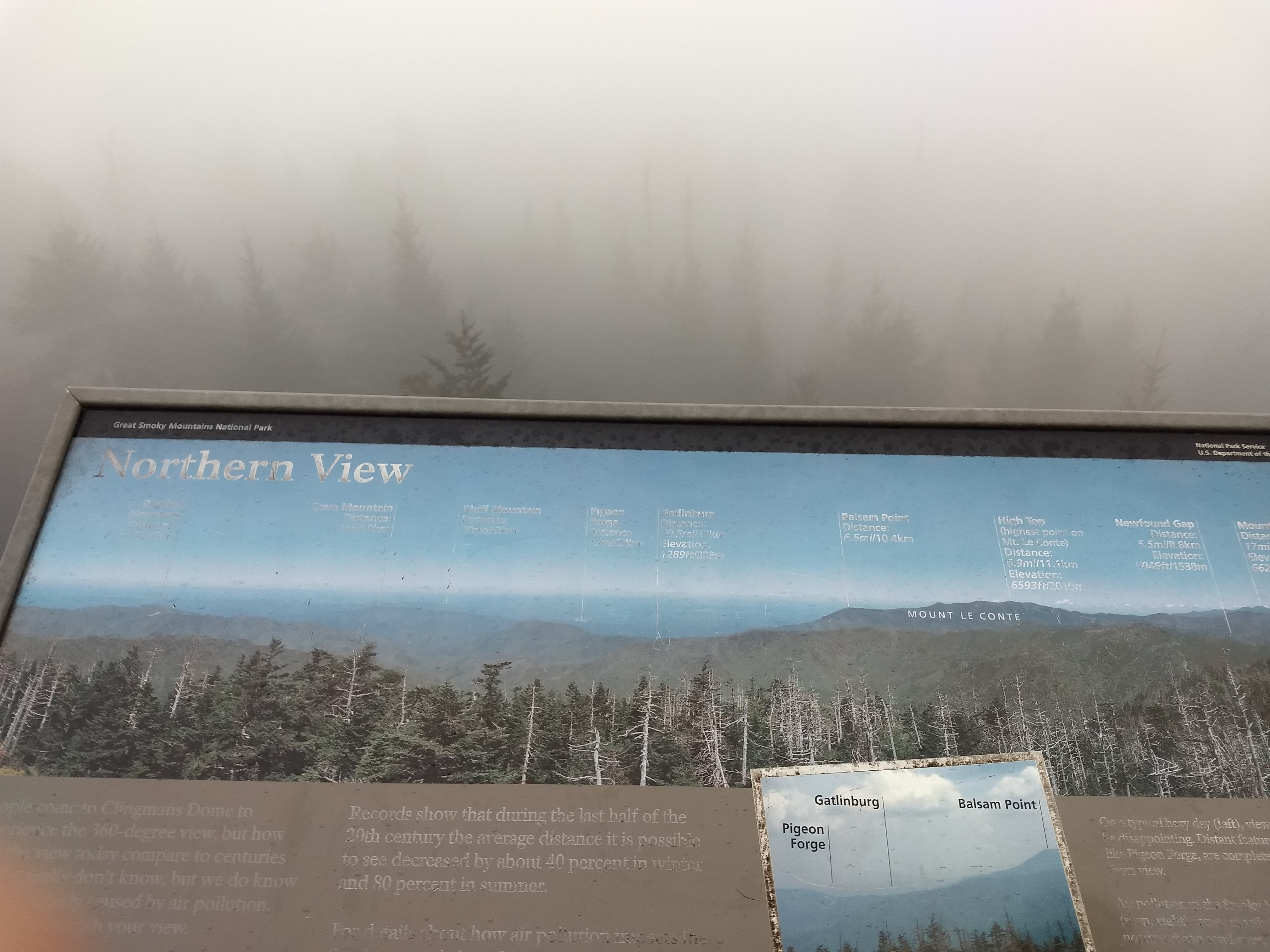 Foggy view from Clingman's dome